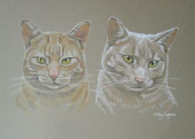 portrait of 2 cats - Dennis and Murphy